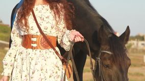 Young woman stay near horse on meadow. stock video footage