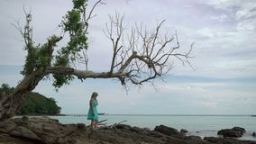 Young woman staying on the rocky beach. Young woman in blue dress staying on the rocky beach under tree stock video