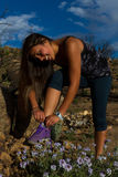Young woman stops to tie her shoes. During a beautiful hike Royalty Free Stock Image