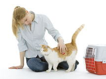 Young woman strokes cat Stock Photography