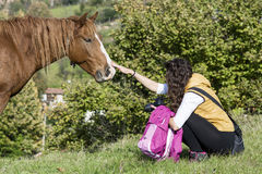 Young woman stroking a beautiful  red wild horse. Young woman stroking a red horse grazing in the meadow Stock Photography