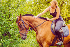 Young woman stroking and sitting on horse Stock Images