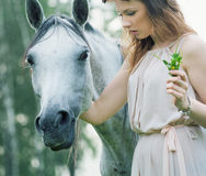 Young woman stroking spotted horse Stock Photos