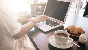 Woman working on her laptop computer sitting in cafe royalty free stock photo
