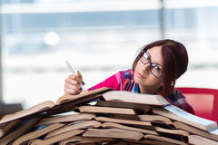 The young woman student preparing for college exams Stock Photography