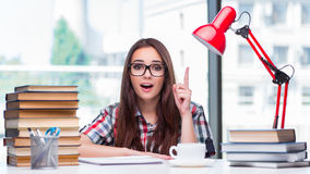 The young woman student preparing for college exams Stock Images