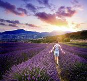 Young woman in summer day in lavender field Royalty Free Stock Image