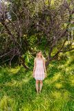 Young woman in summer dress standing near dry tree stock images