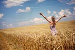 Young woman in summer dress standing in wheat field. Young woman in summer dress standing in the field with raised arms Royalty Free Stock Photography