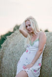 Young woman on the summer field. Young beautiful woman on the summer field Royalty Free Stock Images