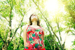 Young woman in sun dress walking through spring forest Stock Image