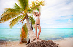 Young woman sunbathing under the palm Royalty Free Stock Image