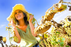 Young woman in a sunflower field Royalty Free Stock Image