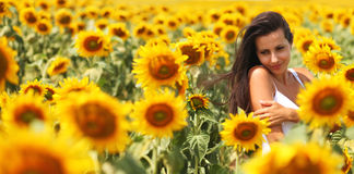 Young woman in the sunflower field. Beautiful girl posing in a field of sunflowers Stock Images