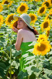 Young woman with sunflower in sunflower field. Stock Images