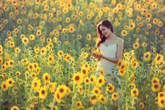 Young woman with sunflowers Stock Photography