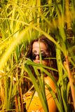 Young woman with sunglasses in a bamboo field royalty free stock image