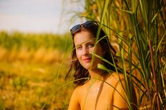 Young woman with sunglasses in a bamboo field royalty free stock photos