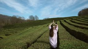 Young woman raises her arms up against a background of tea bushes. A young woman in sunglasses pods up against a background of green tea plantations, a lady stock video
