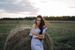 Young woman on sunrise field royalty free stock images