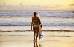 Young woman surfer with board Royalty Free Stock Images