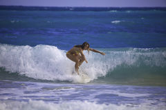 Young woman surfing in hawaii Stock Images