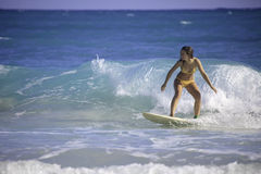 Young woman surfing in hawaii Royalty Free Stock Photos