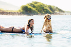 Young Woman Surfing with Her Dog Royalty Free Stock Images