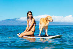Young Woman Surfing with Her Dog Stock Images