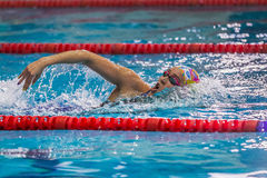 Young woman swimmer swims in pool crawl Stock Photos