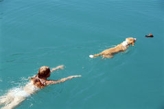 Young woman swimming with dog Stock Photos
