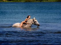 Young woman swimming in the lake on horseback. Royalty Free Stock Photography