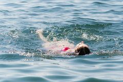 Young woman swimming in ocean Stock Image