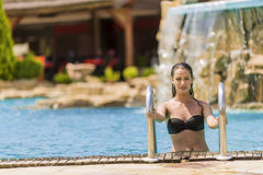 Young woman in the swimming pool Royalty Free Stock Images