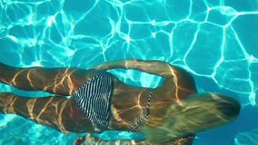Young woman swimming under water in the swimming pool stock video footage