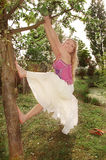 Young woman swinging from a tree Royalty Free Stock Image