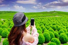 Young woman take a photos at hitachi seaside park, Japan Royalty Free Stock Photos