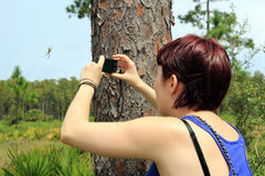 A young woman takes a photo Royalty Free Stock Images