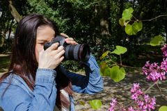 Young woman takes pictures nature near lake Royalty Free Stock Photos