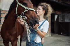 Young woman with her horse. Young woman taking care of her beautiful horse stock photo
