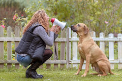 Young woman talking to her dog on a megaphone Stock Images