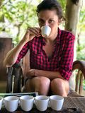 Young woman tasting different type of coffe and tea. Ubud coffe plantation. Luwak coffe. Bali royalty free stock photography