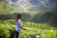 Young Woman on Tea Plantation Royalty Free Stock Photography