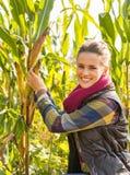 Young woman tearing corn Stock Photos