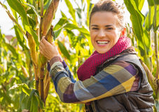 Young woman tearing corn Royalty Free Stock Photos