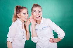 Two teenagers shares secrets, gossip royalty free stock images