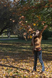 Young woman throwing autumn leaves. Woman throwing leaves in fall, happy day Royalty Free Stock Images