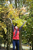 A young woman throwing autumn leaves in the air Stock Images