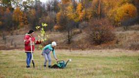 Young woman, together with her daughter, plant a tree. Against the background of a beautiful autumn landscape stock video