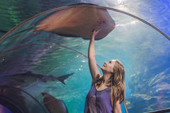 A young woman touches a stingray fish in an oceanarium tunnel Royalty Free Stock Photo